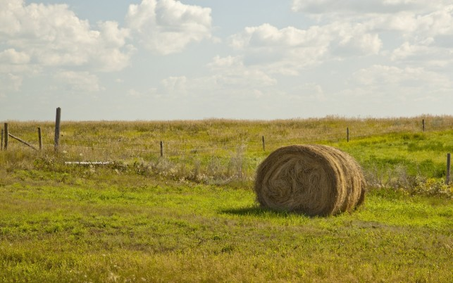 Random: Pasture Hay Bale Fence Clouds