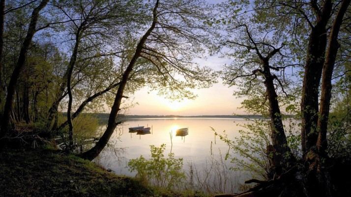 Lake Boats Trees Shore Sunset wallpapers and stock photos