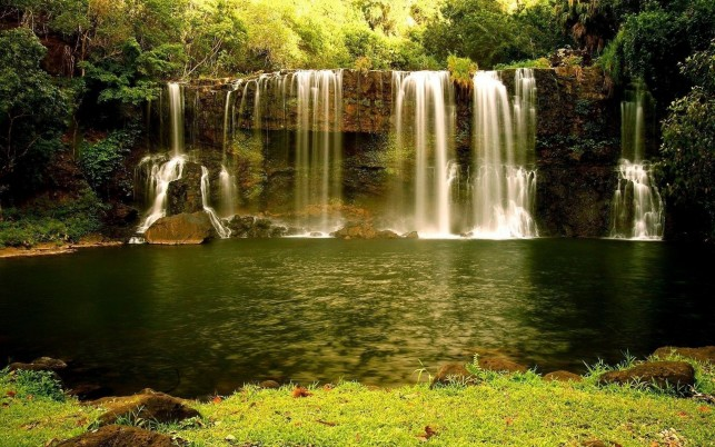 Waterfall Cliff Water Plants wallpapers and stock photos