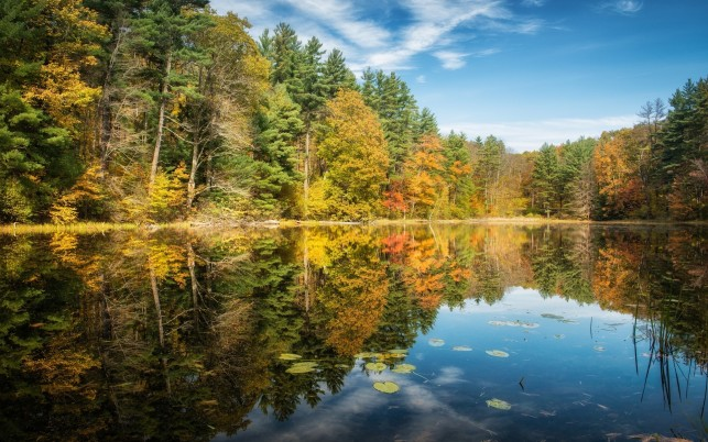 Beautiful Autumn Trees & Lake wallpapers and stock photos