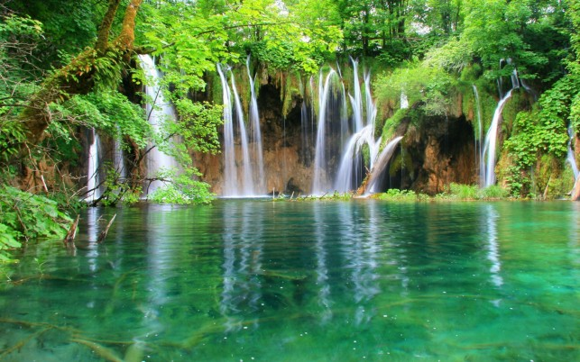 Waterfalls Cliff Lake Jungle wallpapers and stock photos