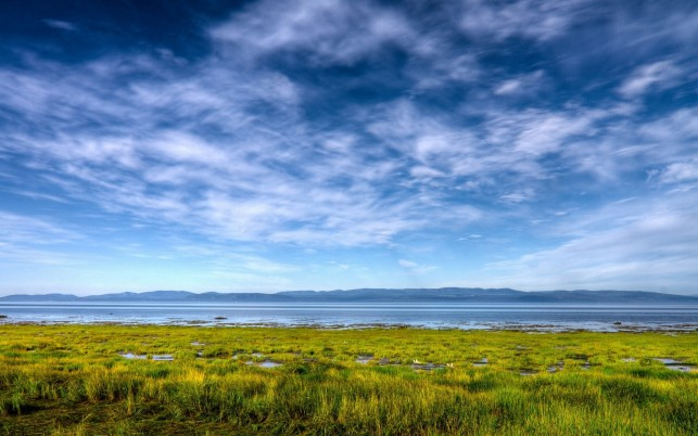 Ocean Blue Sky Green Grass wallpapers and stock photos
