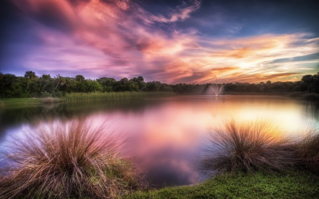 Charming Lake Wood Calico Sky wallpapers and stock photos