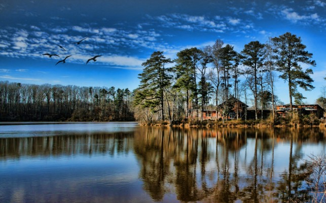 Lake Trees Houses Blue Sky wallpapers and stock photos