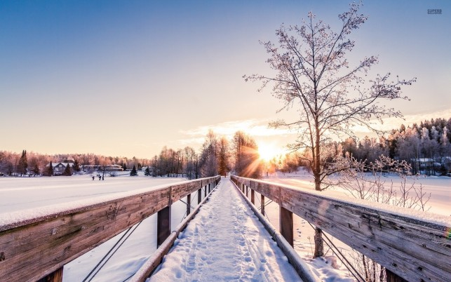 Snowy Bridge Fields Trees Sun wallpapers and stock photos