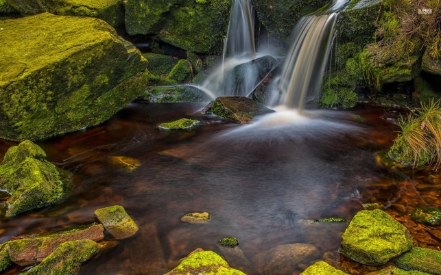Waterfalls Mossy Rocks Grass wallpapers and stock photos