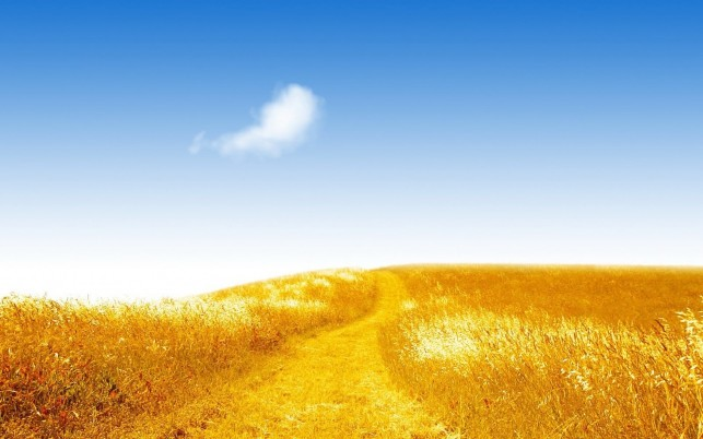 Golden Hill Way Blue Sky wallpapers and stock photos
