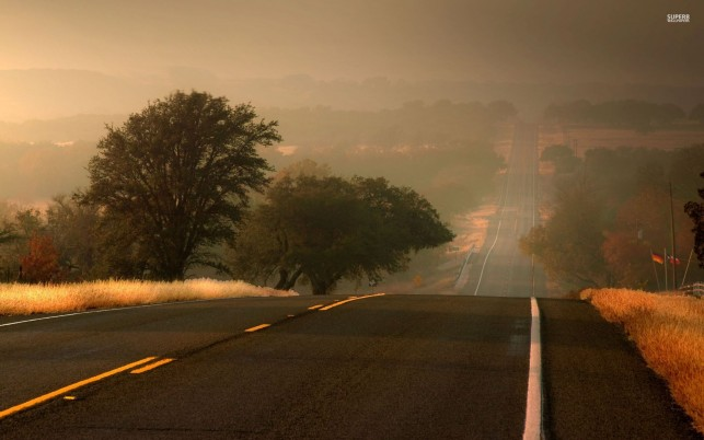Random: Long Road Trees Fields Foggy