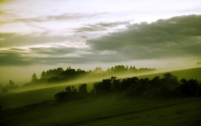 Hill Trees Green Foggy Clouds wallpapers and stock photos