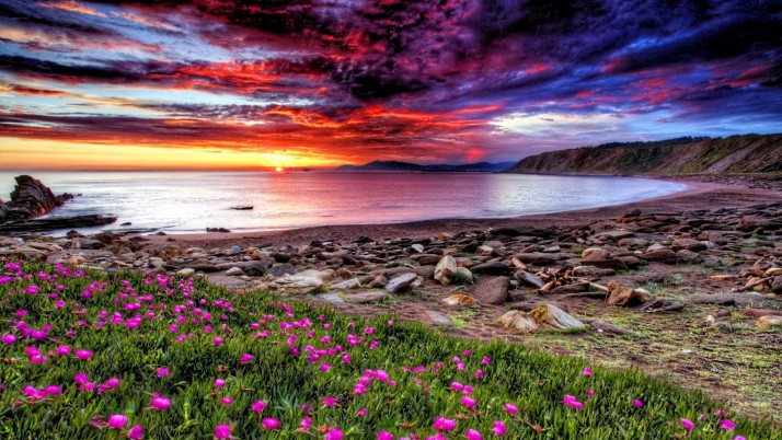 Ocean Coast & Stunning Sunset wallpapers and stock photos