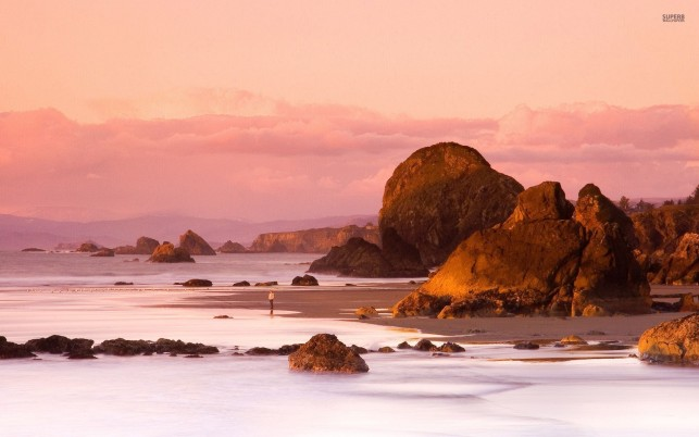 Random: Brown Rocks Ocean Pink Sunset
