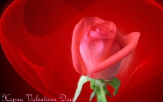 Happy Valentines Day wallpapers and stock photos
