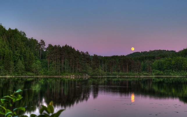 Next: Trees Lake Purple Sky Moon