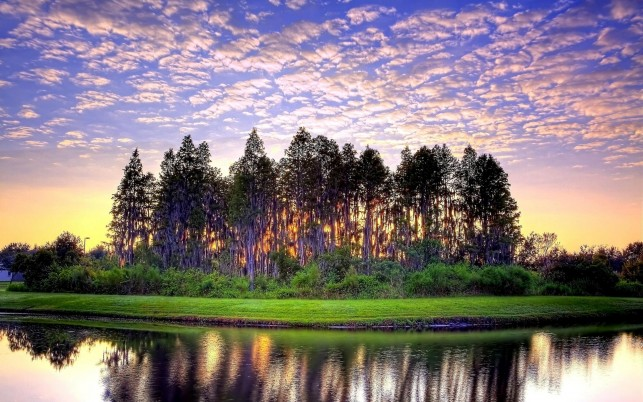 River Trees Grass Pink Sunset wallpapers and stock photos