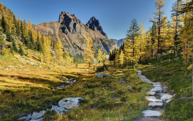 Nice Yoho National Park Canada wallpapers and stock photos