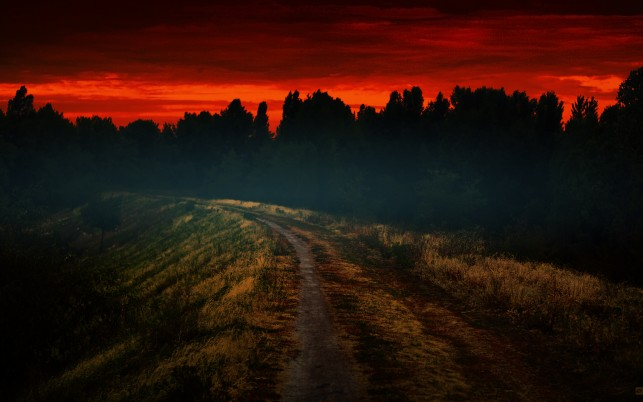 Mysterious Wood Path Fiery Sky wallpapers and stock photos