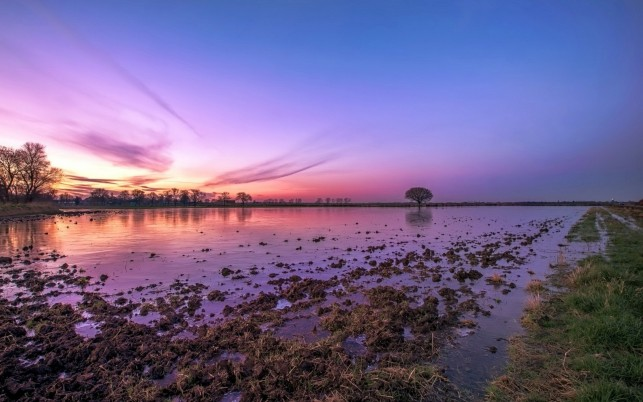 Muddy Lake Nature Pink Sky wallpapers and stock photos