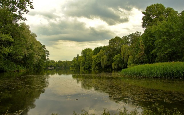 Calm River Trees Plants Clouds wallpapers and stock photos