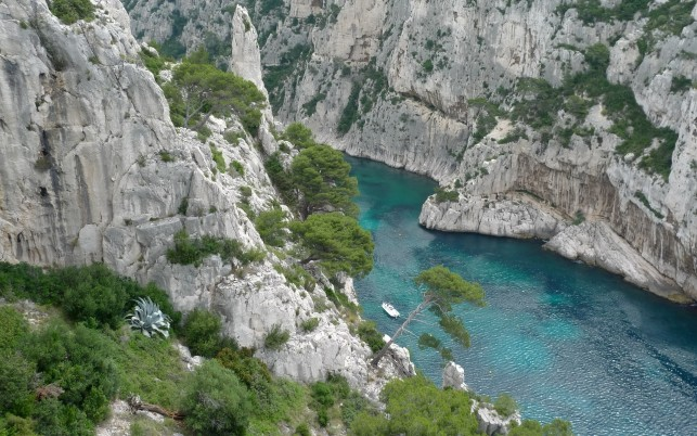 Previous: Turquoise River Stunning Cliff
