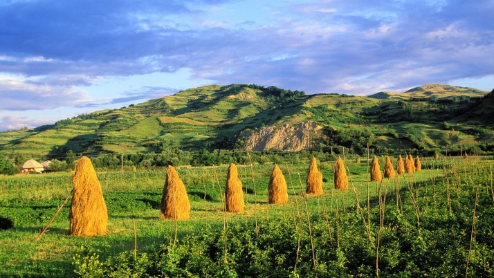 Green Hills Hay Stack Romania wallpapers and stock photos