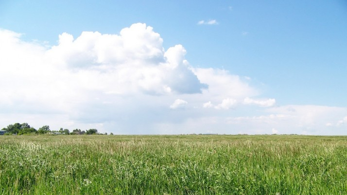 Delightful Green Pasture Cloud wallpapers and stock photos