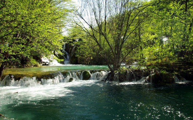 Trees Waterfalls Sunny Croatia wallpapers and stock photos