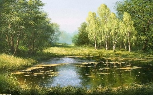 Forest Beautiful Pond Meadow wallpapers and stock photos