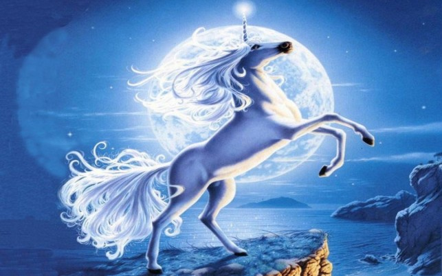 Adorable Unicorn Full Moon wallpapers and stock photos