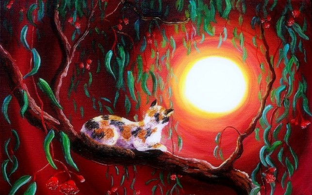 Random: Eucalyptus Boughs Cat Red Sky