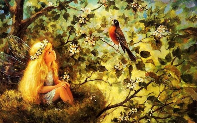 Sweet Fairy Nest Bird Tree wallpapers and stock photos