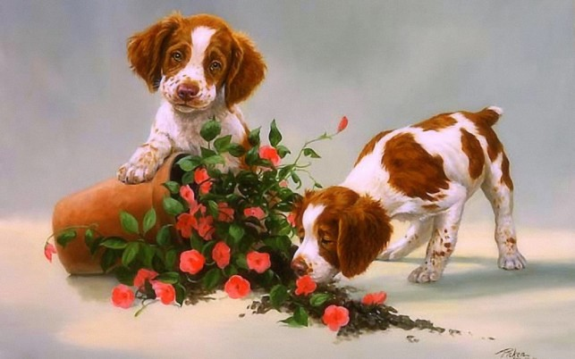 Los cachorros y rosas lindas wallpapers and stock photos