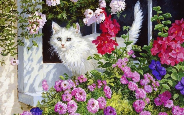 White Kitty & Pink Flowers wallpapers and stock photos