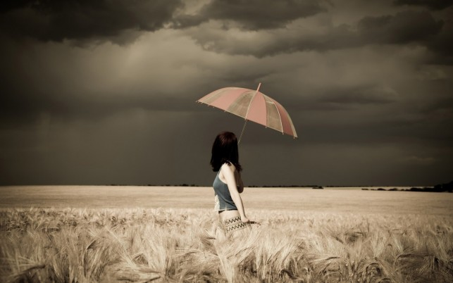 Woman Umbrella Field Stormy wallpapers and stock photos