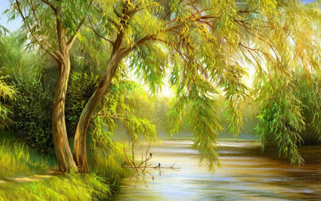 Bright Green Branches & River wallpapers and stock photos