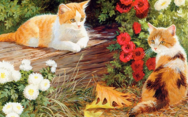 Cute Kittys White & Red Floral wallpapers and stock photos