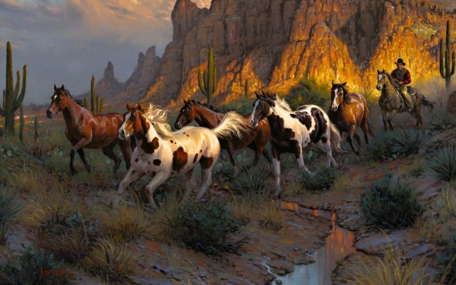 Cowboy Wild Horses Desert wallpapers and stock photos