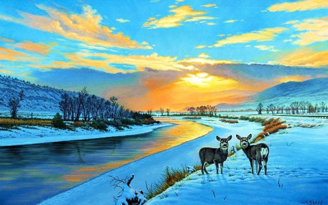 Deer Snowy Sunset Yellow Stone wallpapers and stock photos