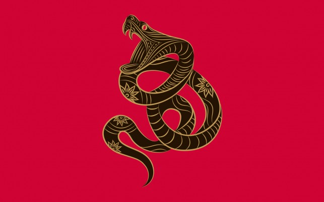 Chinese Zodiac Snake wallpapers and stock photos