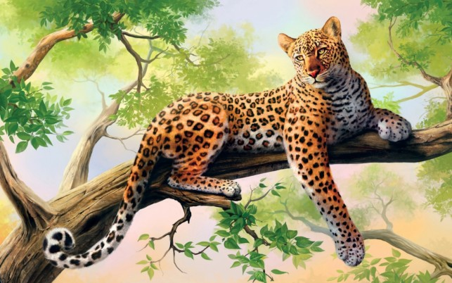 Majestic Leopard Boughs wallpapers and stock photos