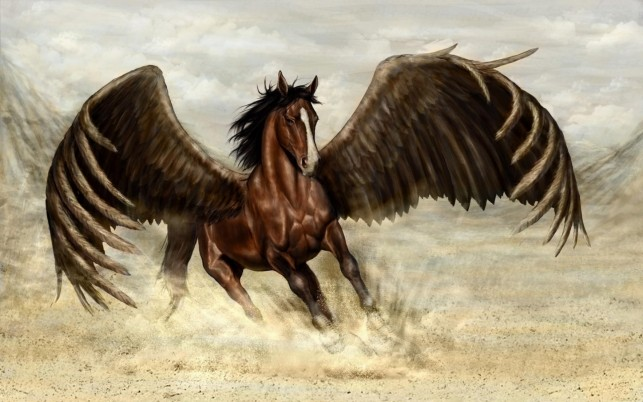 Wonderful Brown Pegasus wallpapers and stock photos