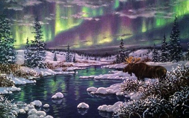 Aurora Forest Snow Moose River wallpapers and stock photos