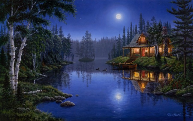 Forest Lake Ducks Lodge Night wallpapers and stock photos