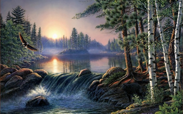Forest Lake Eagle Bear Sunrise wallpapers and stock photos