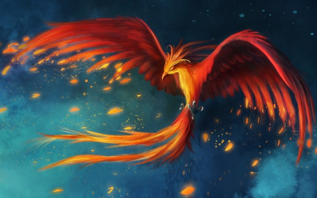 Gorgeous Phoenix Fortitude wallpapers and stock photos