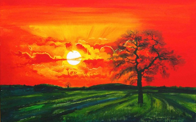 Red Sunset Tree Green Field wallpapers and stock photos