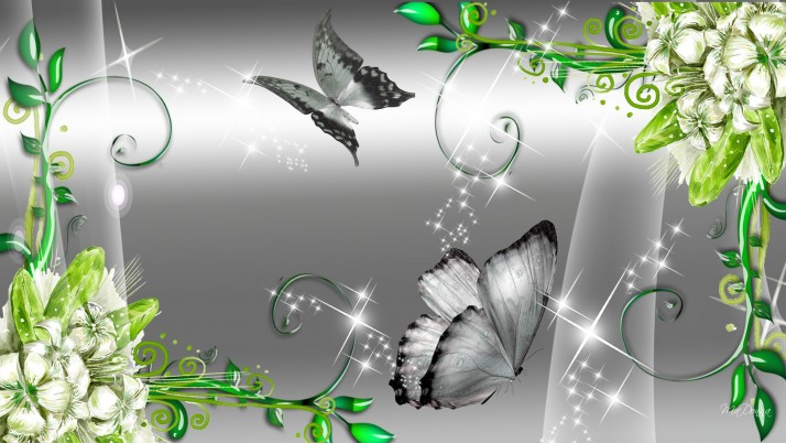 Butterflys & Pretty Flowers wallpapers and stock photos