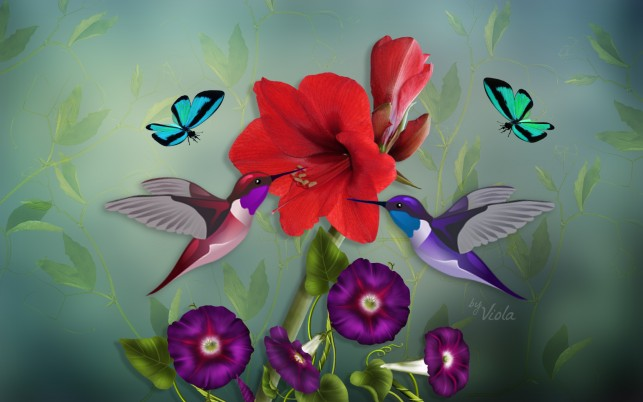 Hummys Butterflys & Flowers wallpapers and stock photos