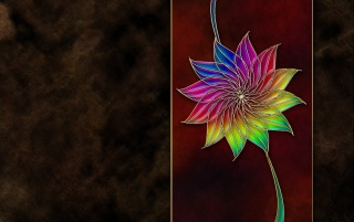 Artisan Flower wallpapers and stock photos