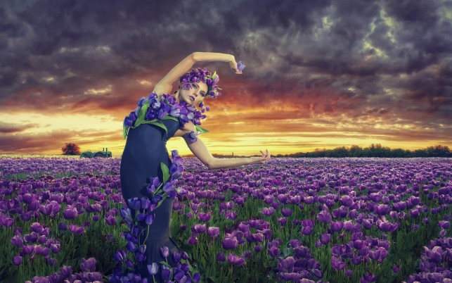 Woman Lilac Tulips Dress Field wallpapers and stock photos