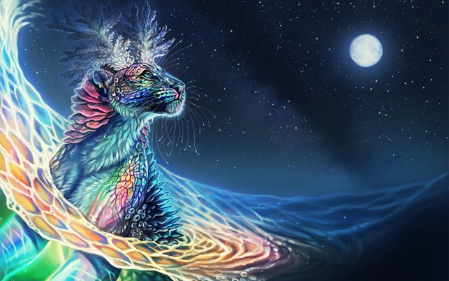 Colorful Cheetah Full Moon wallpapers and stock photos